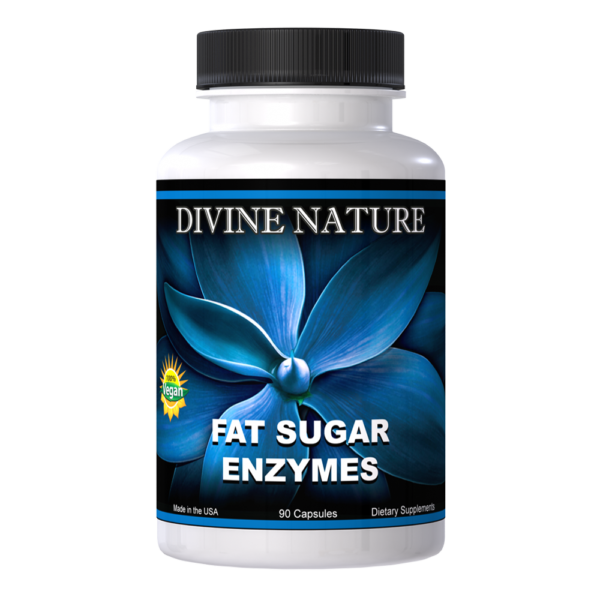 fat sugar enzymes divine nature