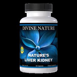 liver kidney divine nature