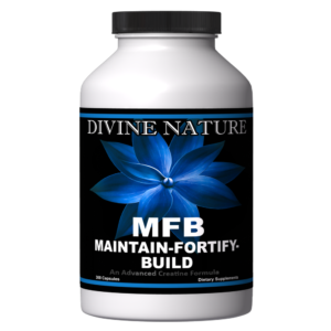maintain fortify-build divine nature